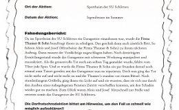Dorfratsch 2014-017