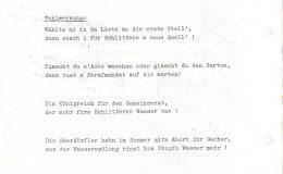 Dorfratsch 1974-014