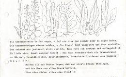 Dorfratsch 1974-015