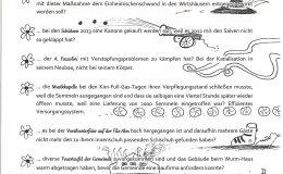Dorfratsch 2013-021