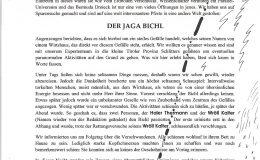 Dorfratsch 2013-034