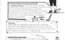 Dorfratsch 1995-017